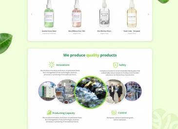 Web gruzínského výrobce BERTA (návrh - v realizaci)